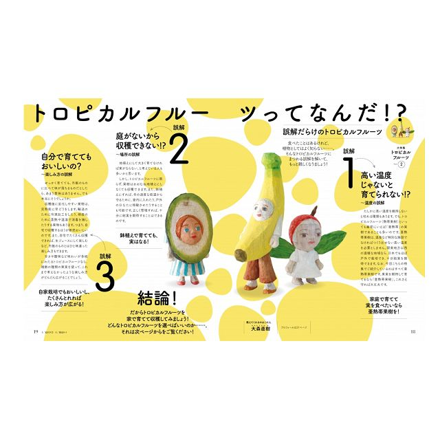 NHK 教科書   趣味的園藝 6月號2019