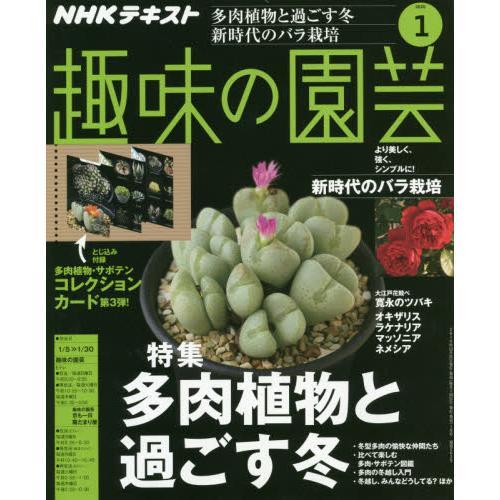 NHK 教科書   趣味的園藝 1月2020