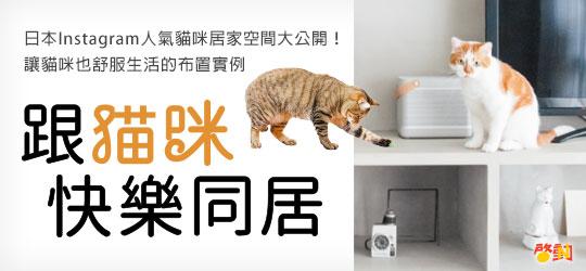 日本Instagram人氣貓咪居家空間大公開!