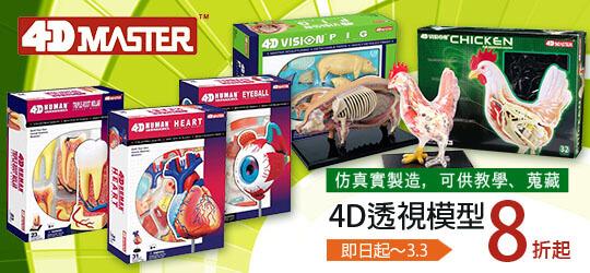 4D透視模型